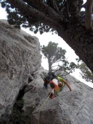 A.F. Buscant la cresta, amb les wambes posades