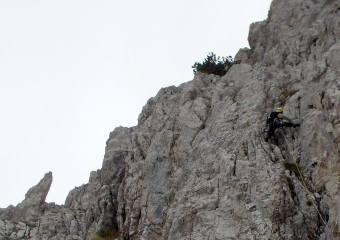 8è. Llarg. Al capdamunt, es veu l'arbre a on farem la R
